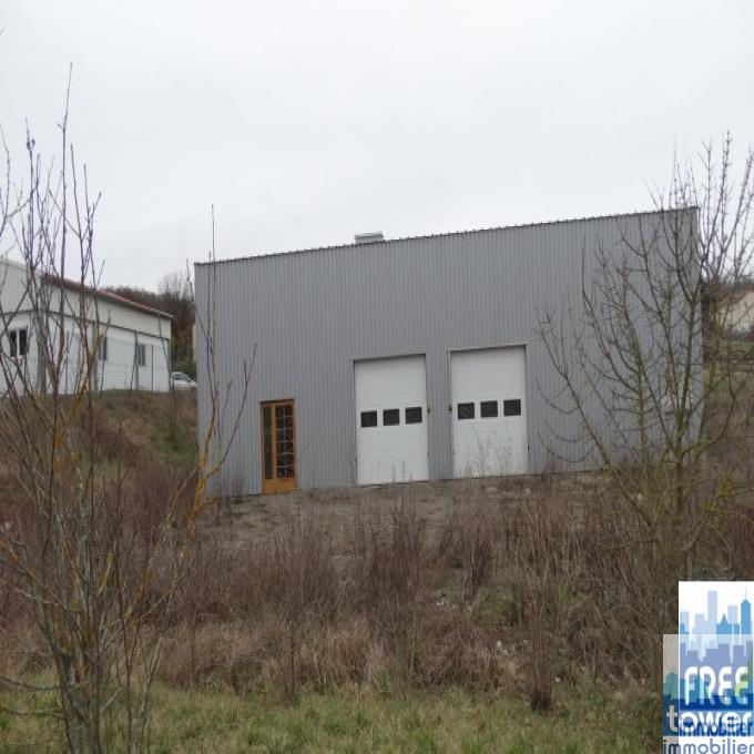 Vente Immobilier Professionnel Local d'activité Savignac (12200)